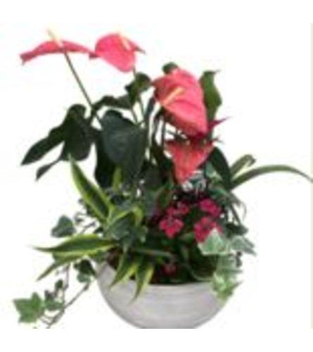 Artistic Flowering Planters