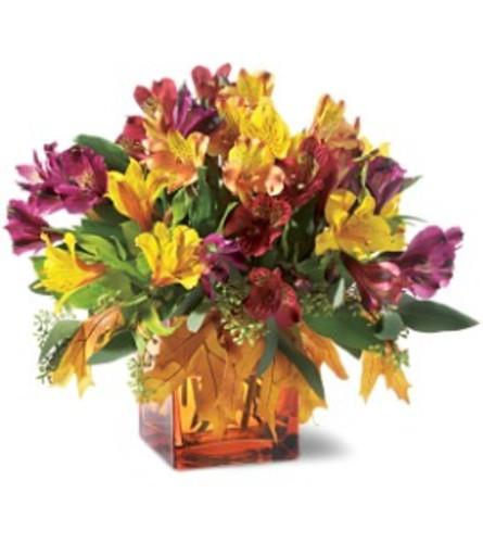 Teleflora's Autumn Alstroemeria Bouquet Vase Arrangement