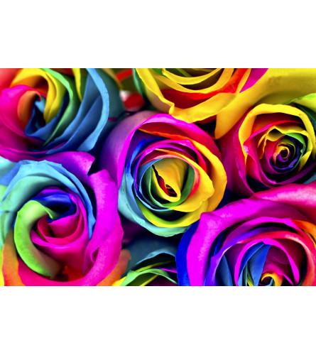 Dozen Rainbow Roses in a Vase
