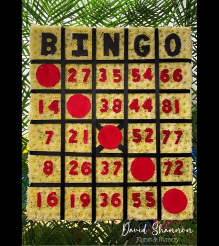 That's Bingo