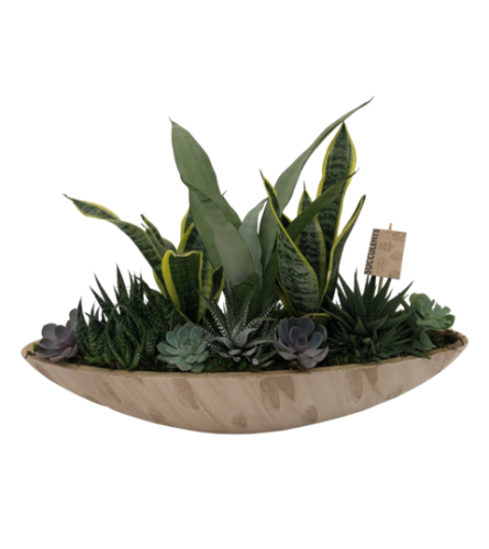 X-Large Succulent Planter