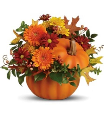 Teleflora's Somethin' Pumpkin Arrangement