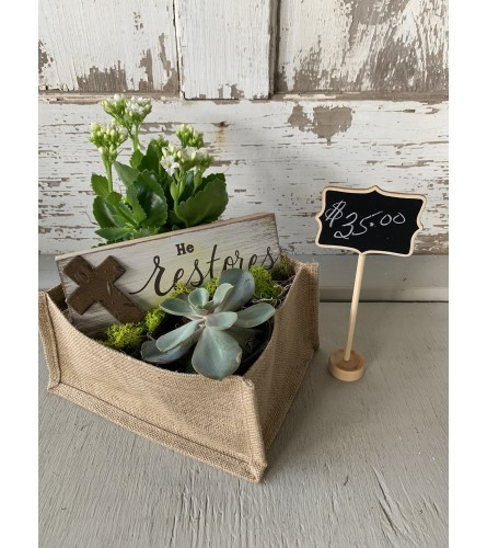 """He Restores"" Green Plant Arrangement"