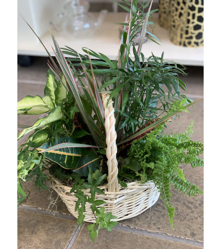 Beach Planter Basket