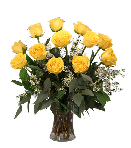 Yellow Roses FSN