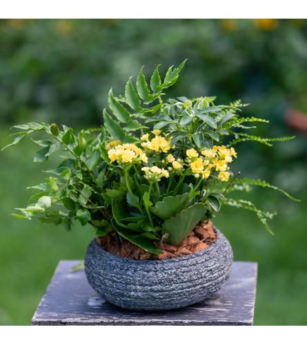 Stone Bowl Garden Planter