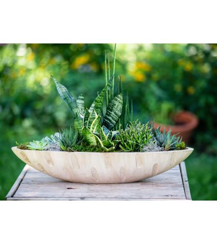 Sculpted Succulent Garden