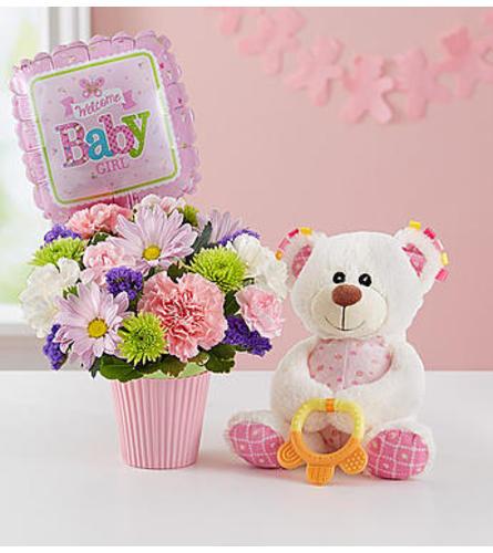 LOTSA LOVE WELCOME BABY GIRL BOUQUET