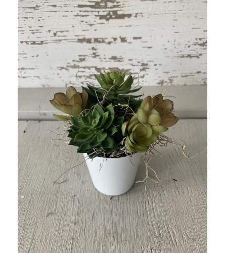 Farmhouse Tumbler with Succulent