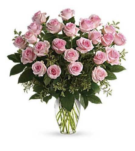 Pink Rose Dozen