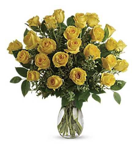 Yellow Rose Dozen