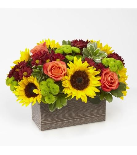 Happy Harvest Garden Wood Box