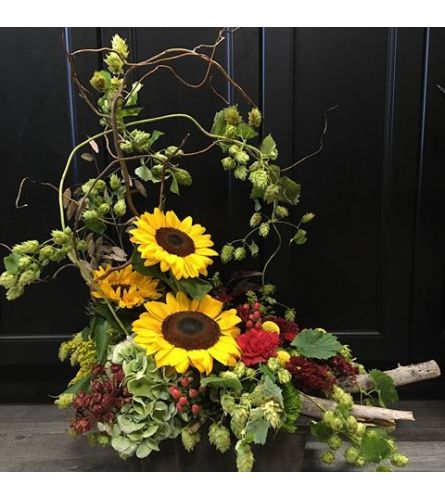 Fall Sunflowers and Hops