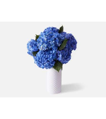 Blue Hydrangea Romance