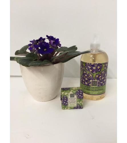 Hand Soap Gift Set - African Violet & Cocoa Butter