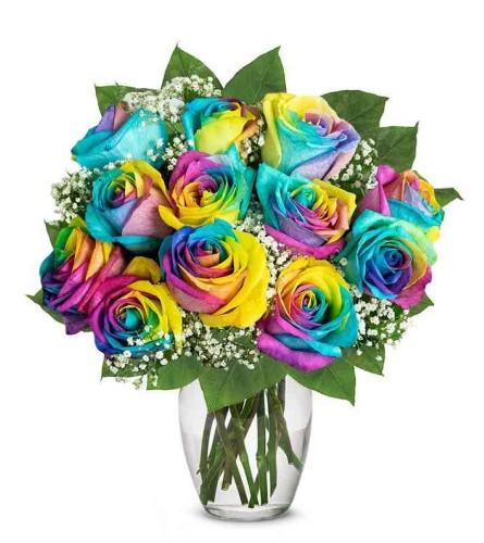 Amazing Roses  one dozen Tie Die rainbow