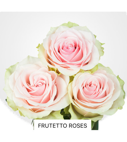 Perfect Pink Rose Bouquet