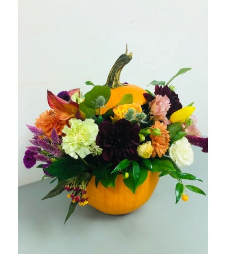 Stuffed Pumpkin Arrangement