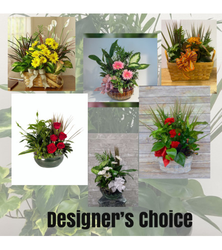 Florists Choice-Planter with Fresh Flowers added
