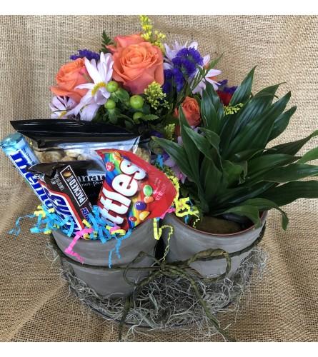 Plant, Bouquet, & Candy bundle
