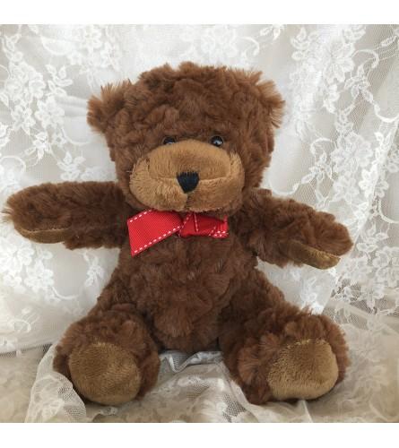 Plush Teddy Bear (Small)