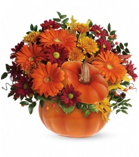 Country bumpkin Pumpkin
