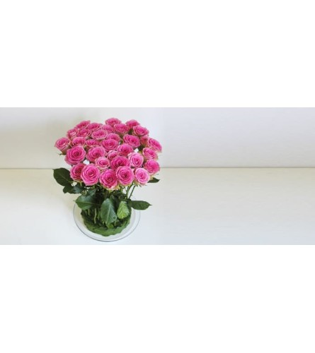 Clean Modern Rose Composition