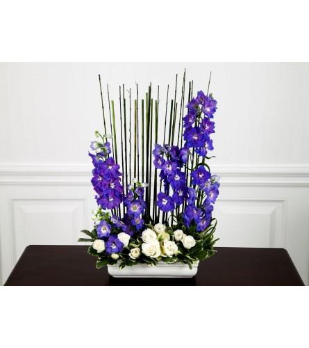 Blue Delphinium Collection
