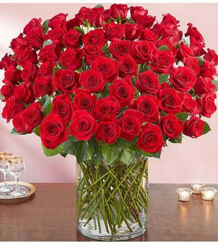 100 Long Stem Red Roses premium vase