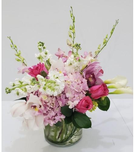 elegant orchids bqt