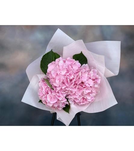 Pink luxury hudnrange from Holland