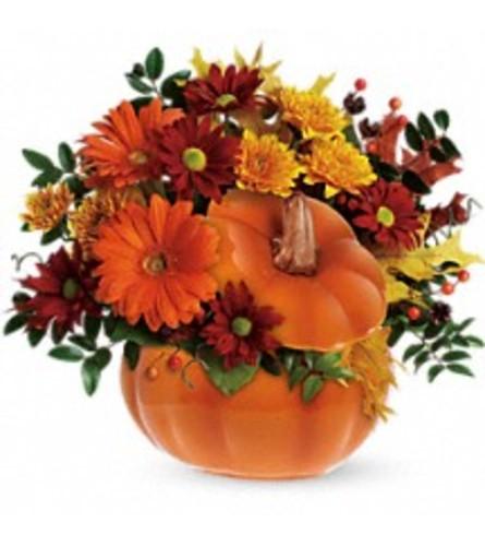 Teleflora's Country Pumpkins