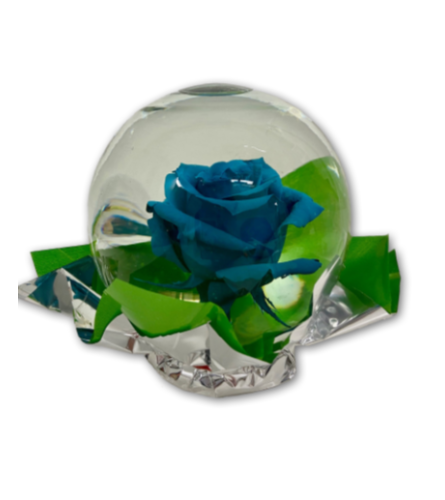 Beautiful Blue Rose in Glass Orb