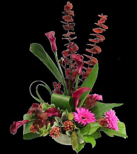 Talisman's Floral Fantasy