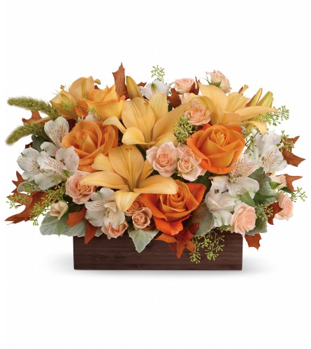 Teleflora's Fall Chic Bouquet by tcg