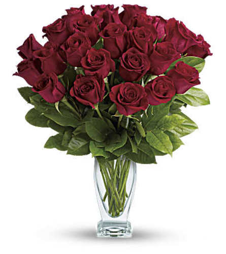 Fine Classic Red Roses