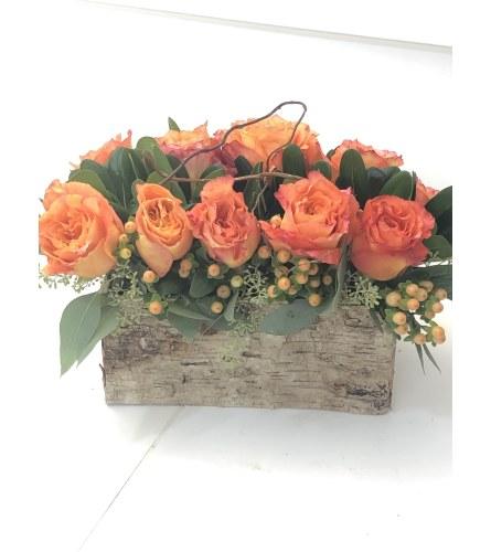 Birthday Rose Garden