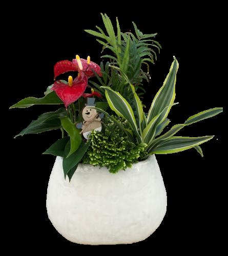 Glossy ceramic planter