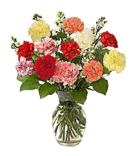 Assorted Carnations in a Vase