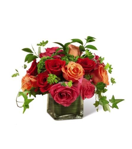 Lush Life Roses FTd