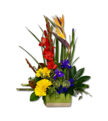 Bold & Beautiful Colourful Arrangement