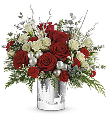 Teleflora Winter Silhouettes Bouquet