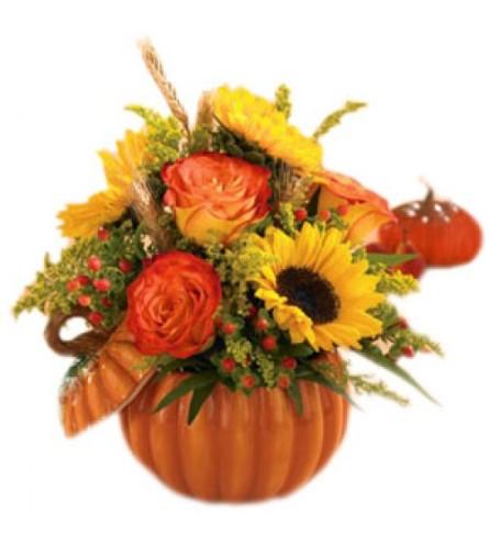 Pumpkin Full of Fall