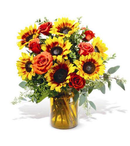 sun flower mix