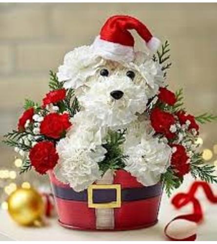 Christmas puppy days