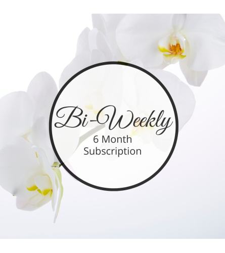 Bi-Weekly, Six Month Subscription