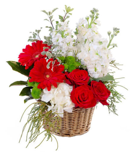Crimson And Ivory Basket