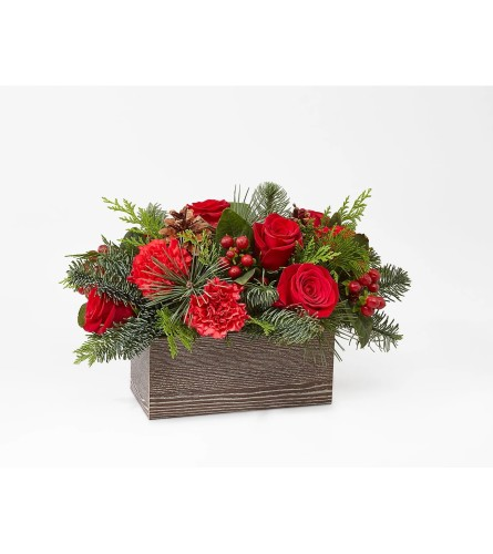 Christmas Boxwood Centerpiece