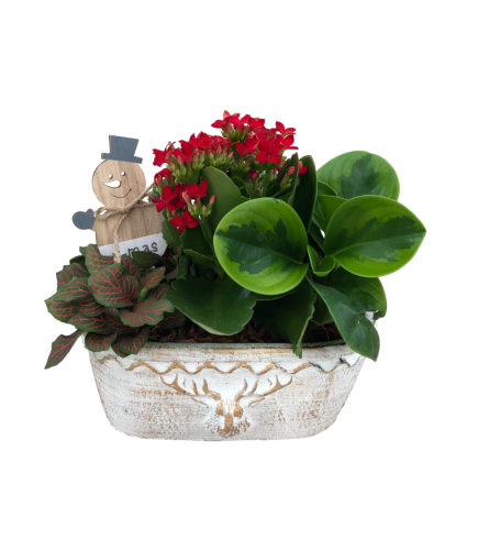 Christmas Oval Planter with Mr. Snowman