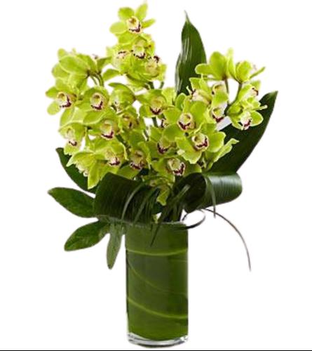 Luxury Orchid Bouquet